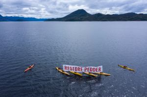2020 Paddle for Pedder, Rob Blakers